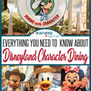 Disneyland Character meals