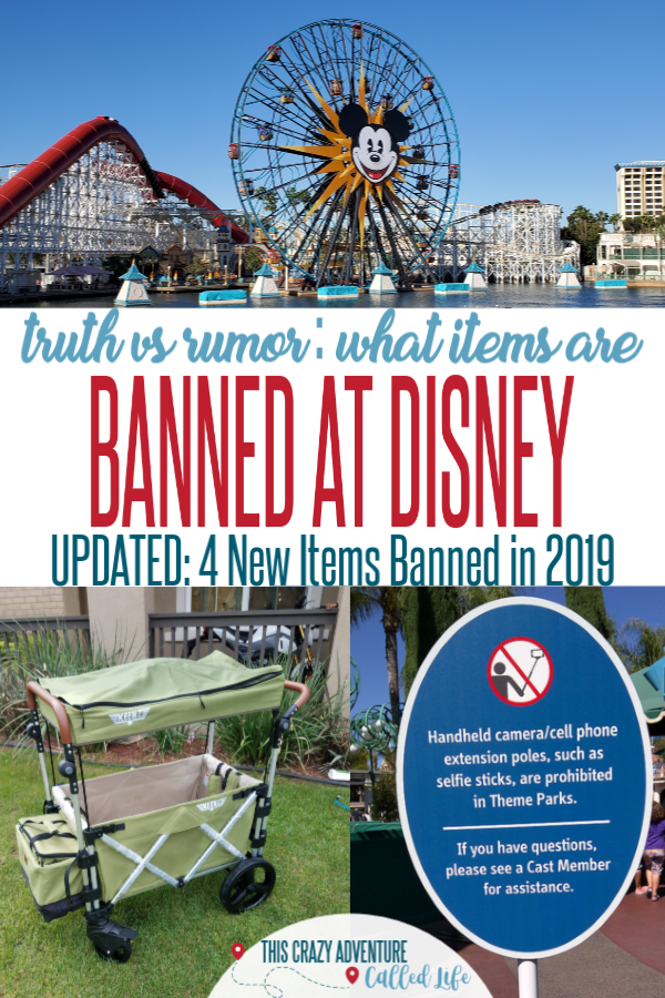 Planning a trip to Disneyland or Disney World. Traveling with Kids is hard to enough, you don't want to be turned away at security. Read this post to find out what is actually banned at Disney and what is just rumor. Good to know before <a href=