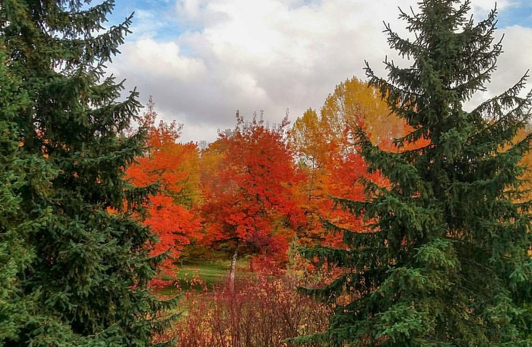 Fall Road Trips Western United States