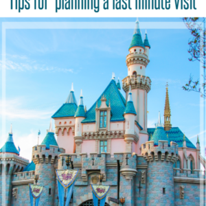 Planning a last minute trip to Disneyland? These tips will help you stay on a budget, and have a great time.