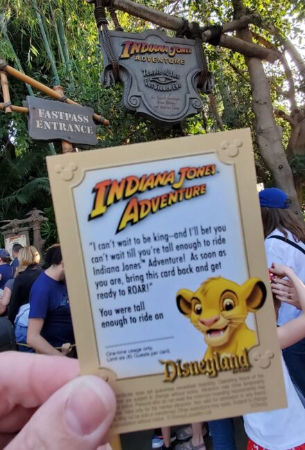 card to return to Indiana Jones when rider is taller, gaining access to fastpass. Has instructions printed on it and picture of Simba.