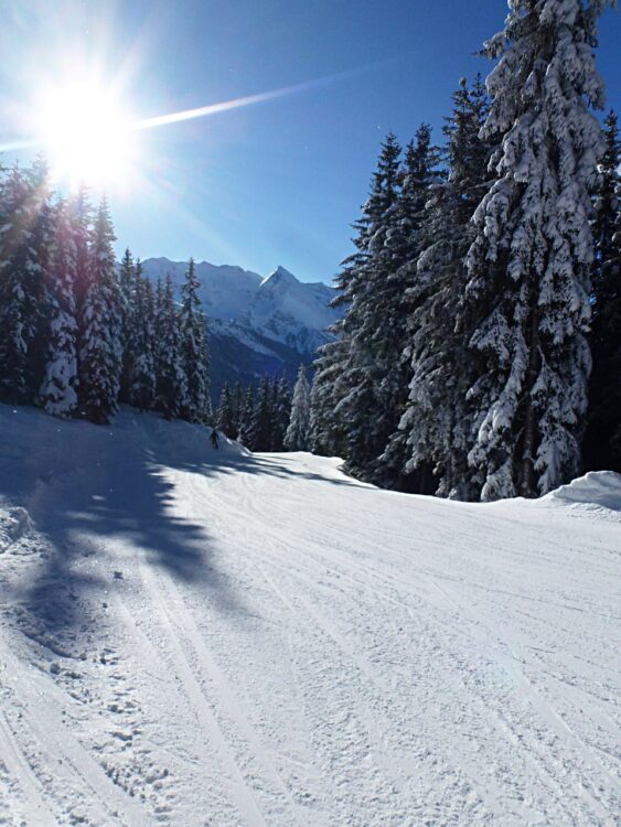 ski resort new boise idaho mountain with snow and trees