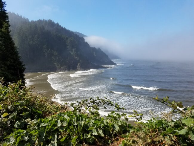 View from Heceta Head Lighthouse Trail Oregon Coast