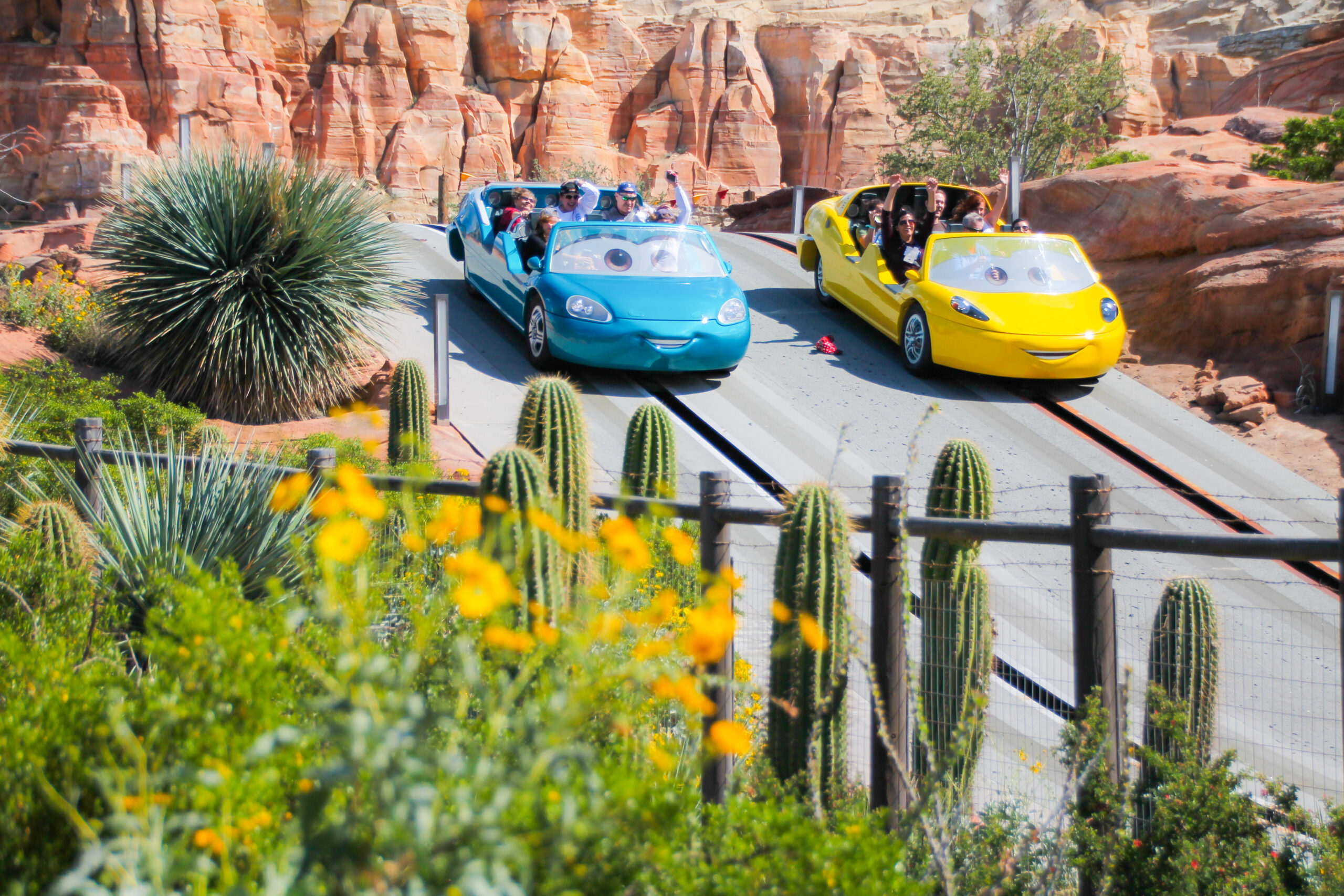 Radiator Springs Racers at Disneyland in April