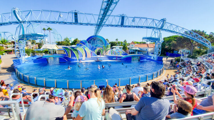 people sitting at the dolphin show at SeaWorld San Diego, no social distancing